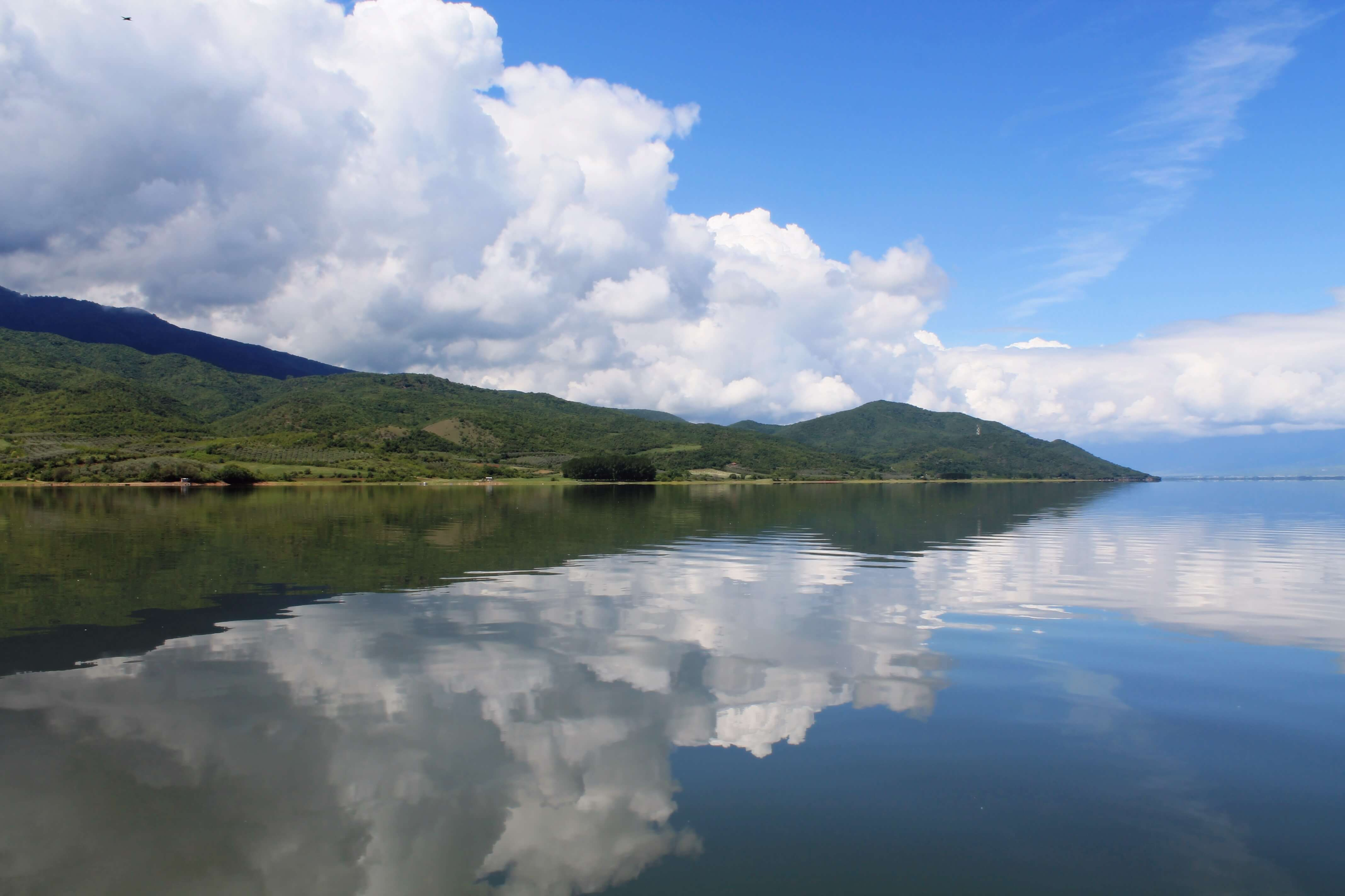 Lake Kerkini ~ Serres